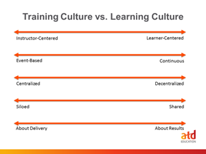 training-culture-org-culture